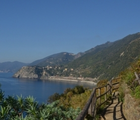 A MODERN HERO: Alessandro's passion for his land and wine – Cinque Terre